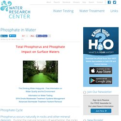 Phosphate in Water