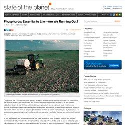 Phosphorus: Essential to Life—Are We Running Out?