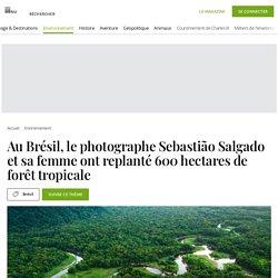 Au Brésil, le photographe Sebastião Salgado et sa femme ont replanté 600 hectares de forêt tropicale