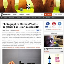 Photographer Mashes Photos Together For Hilarious Results