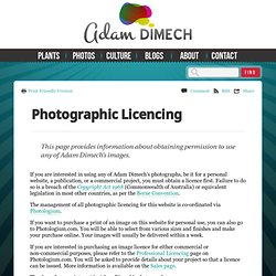 Photographic Licencing
