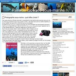 Photographie sous-marine : quel réflex choisir ? - Passion plongée sous-marine