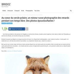 Au coeur du cercle polaire, un mineur russe photographie des renards pendant son temps libre. Des photos époustouflantes !