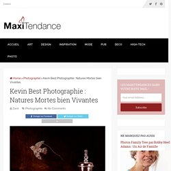 Kevin Best Photographie : Natures Mortes bien Vivantes