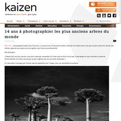 14 ans à photographier les plus anciens arbres du monde