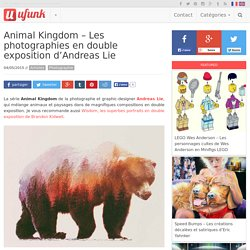 Animal Kingdom – Les photographies en double exposition d'Andreas Lie