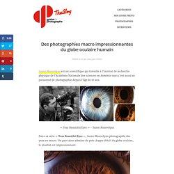 Photographies de l'oeil humain en macro par le photographe Suren Manvelyan