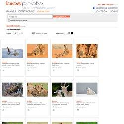 Agence Photographique spécialisée dans la Nature et l'Environnement