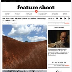 Lee Deigaard Photographs the Backs of Horses as Landscapes - Feature Shoot