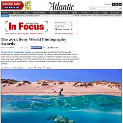 The 2013 Sony World Photography Awards - In Focus