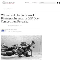 2017 Winners of the Sony World Photography Awards Open Competition