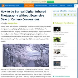 How to do Surreal Digital Infrared Photography Without Expensive Gear or Camera Conversions