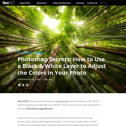 Photoshop Secrets: How to Use a Black & White Layer to Adjust the Colors in Your Photo