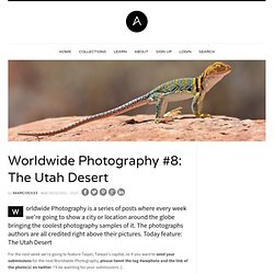 Worldwide Photography #8: The Utah Desert
