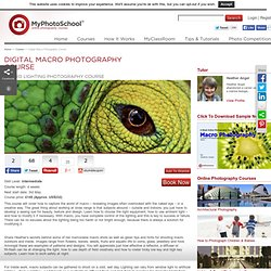 Macro Photography Course, Tutorials & Workshops from MyPhotoSchool