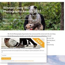 Winners: Sony World Photography Awards 2017 - Photographs and text by Sony World Photography Awards