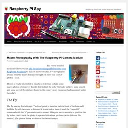 Macro Photography With The Raspberry Pi Camera Module