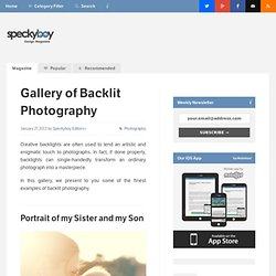 Gallery of Backlit Photography