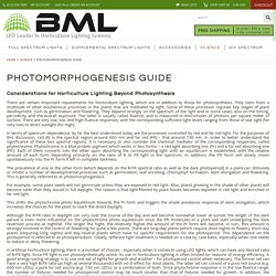 Photomorphogenesis Guide and Information