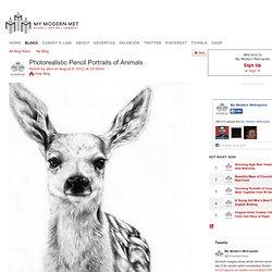 Photorealistic Pencil Portraits of Animals