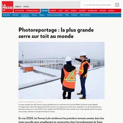 Photoreportage : la plus grande serre sur toit au monde