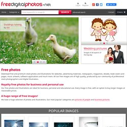 Free Photos - Free Images - Royalty Free Photos - Free Stock Pho