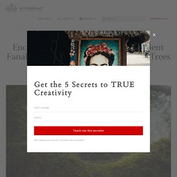 25 Photos of Madeira's Dreamy Fanal Forest by Albert Dros