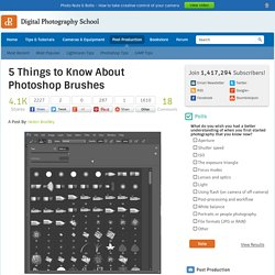 5 Things to Know About Photoshop Brushes - Digital Photography School