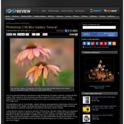 Photoshop CS6 Blur Gallery Tutorial