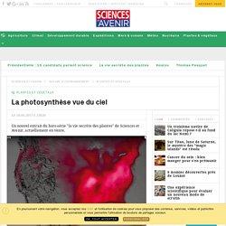 La photosynthèse vue du ciel et par satellites - Sciencesetavenir.fr