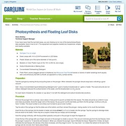 Photosynthesis and Floating Leaf Disks