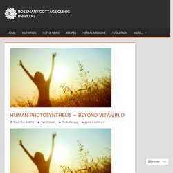 Human photosynthesis – beyond vitamin D – Rosemary Cottage Clinic Blog
