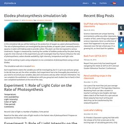Photosynthesis in Elodea - YouTube