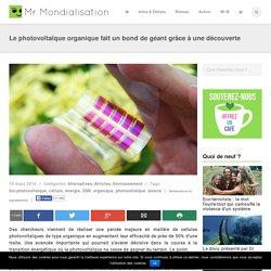 Le photovoltaïque organique fait un bon de géant grâce à une découverte