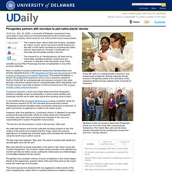 UNIVERSITY OF DELAWARE 23/12/09 Phragmites partners with microbes to plot native plants' demise