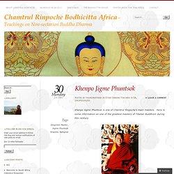 Chamtrul Rinpoche Bodhicitta Africa
