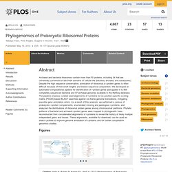 Phylogenomics of Prokaryotic Ribosomal Proteins
