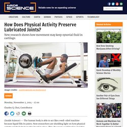 How Does Physical Activity Preserve Lubricated Joints?