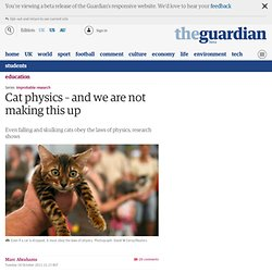 Cat physics – and we are not making this up
