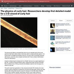 The physics of curly hair: Researchers develop first detailed model for a 3-D strand of curly hair