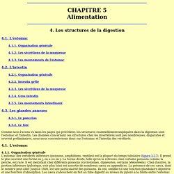 Physio Ch 5-4 Les structures de la digestion