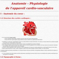 Anatomie - Physiologie de l'appareil cardio-vasculaire