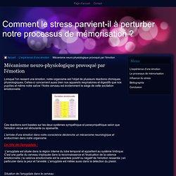 Mécanisme neuro-physiologique provoqué par l'émotion - Comment le stress parvient-il à perturber notre processus de mémorisation ?