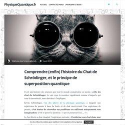 Comprendre (enfin) l'histoire du Chat de Schrödinger, et le principe de superposition quantique - PhysiqueQuantique.fr