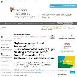 FRONT. ECOL. EVOL. 04/09/18 Phytomanagement and Remediation of Cu-Contaminated Soils by High Yielding Crops at a Former Wood Preservation Site: Sunflower Biomass and Ionome
