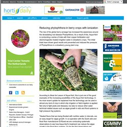 HORTI DAILY 25/04/17 Reducing phytophthora in berry crops with ionization