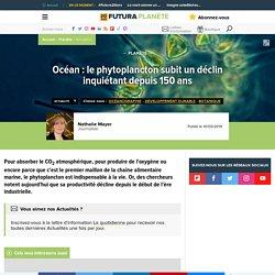 Océan : le phytoplancton subit un déclin inquiétant depuis 150 ans