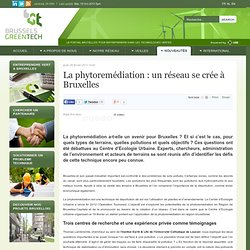 BRUSSELS GREENTECH 28/02/13 La phytoremédiation : un réseau se crée à Bruxelles