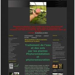 Phytoremédiation et Phytorestauration-dépollution par les plantes - La pépinière aquatique