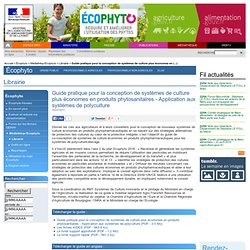 Guide pratique STEPHY polyculture